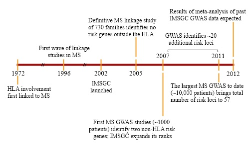 Fig. 3. Marking progress. Timeline representing key events in the history of MS genetics and the IMSGC. Researchers first identified a genetic risk locus for MS 30 years ago; in the past five years, a slew of other genes associated with the disease have been found.