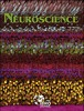 Neuroscience cover