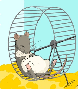 Mice exhibit fatigue in a number of ways, including diminished physical activity on the running wheel. Image by Cynthia McKelvey.