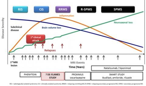 Progression in MS. Courtesy Dr. Gavin Giovannoni